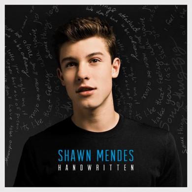 Carátula - Shawn Mendes - Stitches (Seeb Remix)