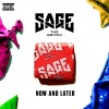 Carátula de Sage The Gemini - Now And Later