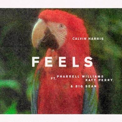 Carátula - Calvin Harris - Feels