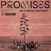 Carátula de Calvin Harris feat. Sam Smith - Promises