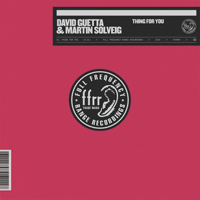 Carátula - David Guetta & Martin Solveig - Thing For You