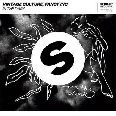 Carátula - Vintage Culture - In The Dark