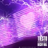 Carátula de Tiesto feat. Becky Hill - Nothing Really Matters