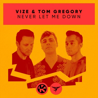 Carátula - VIZE & Tom Gregory - Never Let me Down