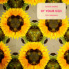 Carátula de Calvin Harris feat. Tom Grennan - By Your Side