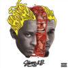 Carátula de Chris Brown - Go Crazy